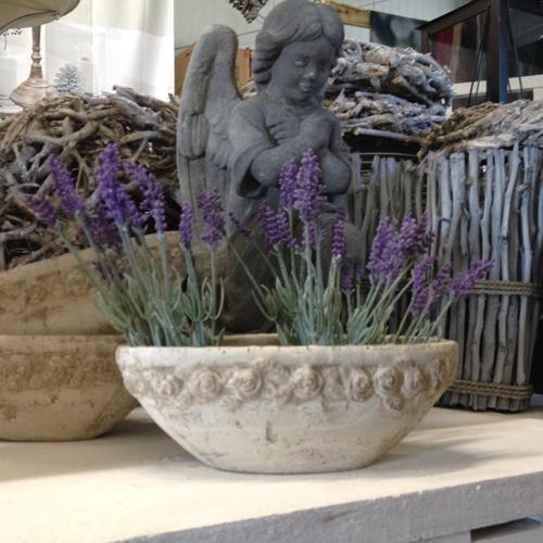 pflanzenschale blumenschale blumentopf landhaus deko vintage shabby stein vase. Black Bedroom Furniture Sets. Home Design Ideas