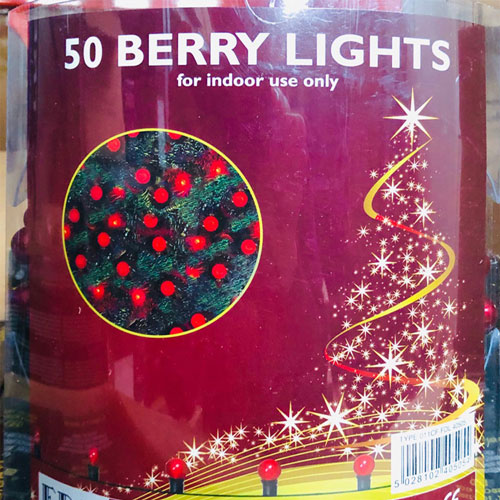 50 Led berry lights rot
